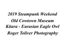 2019_SteampunkWeekend_Kitara_Identity_Plate.jpg