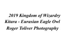 2019_KingdomOfWizardry_Kitara_Identity_Plate.jpg