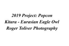 2019_Project_Popcon_Kitara_Identity_Plate.jpg